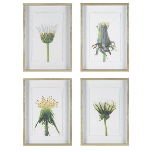 Wildflowers Gold Framed Prints - Set of 4
